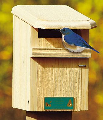 Conservation sparrow resistant bluebird house for Sparrow birdhouse plans