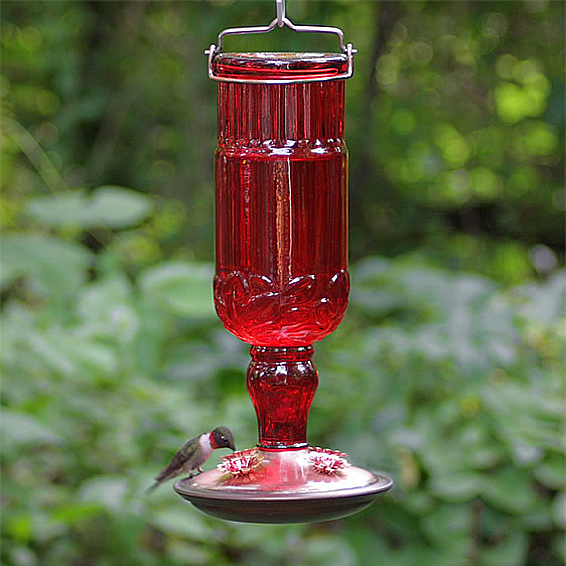 Elegant Antique Glass Bottle Hummingbird Feeder Ruby Red