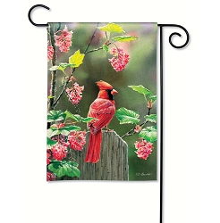 Cardinal Beauty Garden Flag