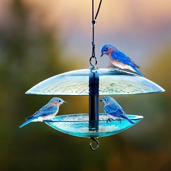 Recycled Glass Bird Feeder w/Weather Dome