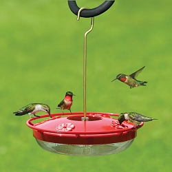HummZinger HighView 12oz Hummingbird Feeder