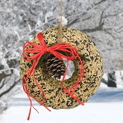 Bundt Pine Cone Edible Bird Seed Wreath with Bow