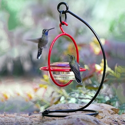 Sphere Hummingbird Feeder Red with Perch and Tabletop Stand