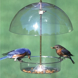 Seed Saver Blue Domed Bird Feeder