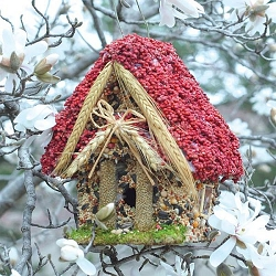 Hansel and Gretel Storybook Cottage Edible Birdhouse