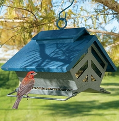 Chalet Hopper Bird Feeder