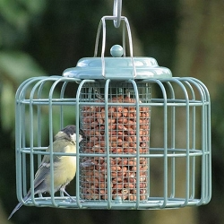 Nuttery Mini Round Caged Peanut and Sunflower Feeder