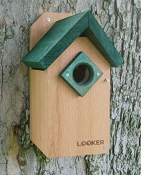 Bluebird Green Roof Bird House