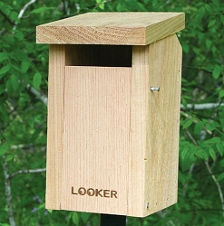Sparrow Resistant Bluebird Slot Bird House