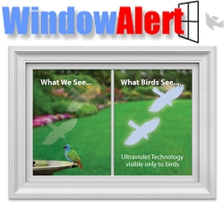 Window Alert Bird Collision Decal Transparent Hawk 4/Pack