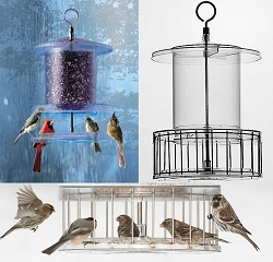 All Weather Clear Bird Feeder 4 Quart with Squirrel Cage