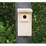 Conservation Birder's Dozen Bluebird House 12/Pack