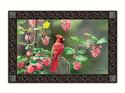 Cardinal Beauty MatMate Doormat