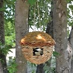 Hanging Grass Roosting Pocket Round Set of 12