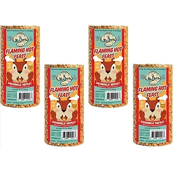 Flaming Hot Feast Small Seed Cylinder 19 oz. 4-Pack