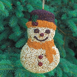 Frosty Snowman Edible Birdseed Feeder