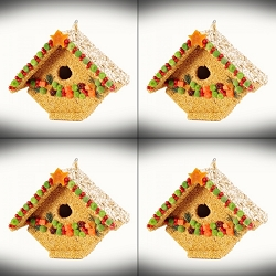 Fruit Casita Edible Birdhouse  4/Pack