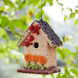 Spring Fruit Bed & Breakfast Edible Birdhouse