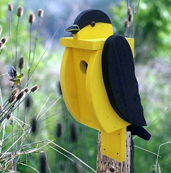 Amish Hand-Made Shaped Bird House Goldfinch