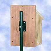 Bird House Poles & Accessories