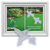 Window Bird Collision Decals