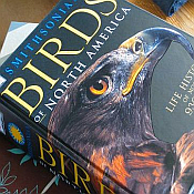 Birding Books & Field Guides