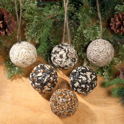 Christmas Tree Seeds.Christmas Tree Seed Ball Ornaments 6 Pack