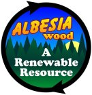 Eco-Friendly Albesia Wood
