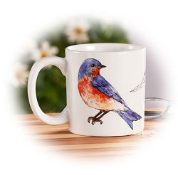 Field Guide Eastern Bluebird Ceramic Coffee Mug Set of 2