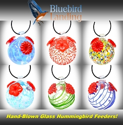 Glass Globe Hummingbird Feeder Assortment Set of 6