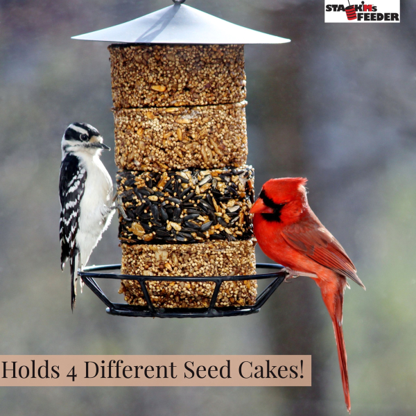 Stack'Ms Seed Cake Bird Feeder