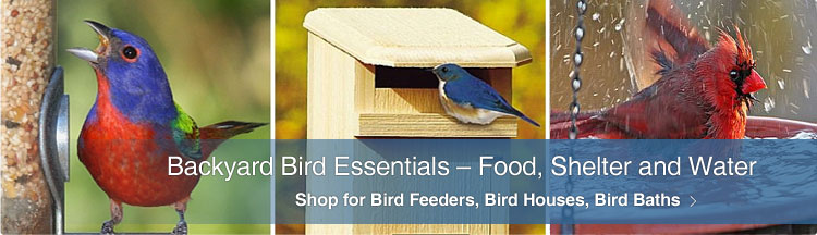 Wild Bird Essentials - Bird Feeders, Bird Houses, Bird Baths