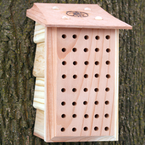 Bee Houses - Insect Shelters
