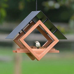 Architect Bird Feeder