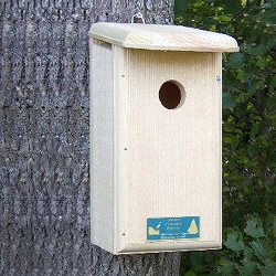 Conservation Nuthatch House