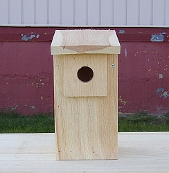 Conservation Eastern Bluebird House Kit