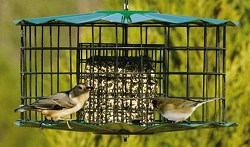 Barrier Guard Caged Double Suet Cake Feeder Green
