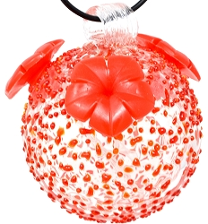 Glass Globe Hummingbird Feeder Red Textured