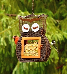 Owl Dual Suet and Seed Feeder