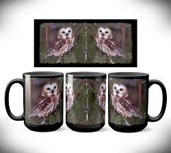 Saw-Whet Sweetness Coffee Mug 15 oz. Set of 2