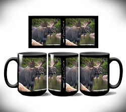 Big Dipper Moose Coffee Mug 15 oz. Set of 2