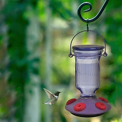 Lavender Field Top-Fill Glass Hummingbird Feeder
