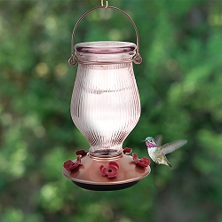 Rose Gold Top-Fill Glass Hummingbird Feeder