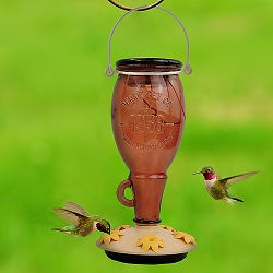 Sugar Maple Top-Fill Glass Hummingbird Feeder