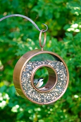 Circle Fly-Through Bird Feeder Venetian Bronze