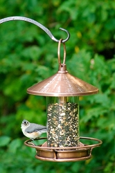 Classic Perch Bird Feeder Venetian Bronze