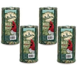 Wild Bird Feast Small Seed Cylinder 28 oz. 4-Pack