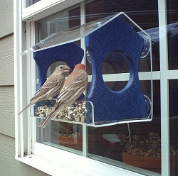 Recycled Poly Window Bird Feeder Medium Blue