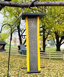 Amish Recycled Poly Finch Feeder with Mesh Screen