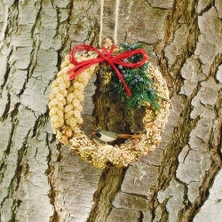 Rustic Edible Birdseed Wreath 6